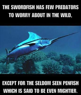 Swordfish-penfish