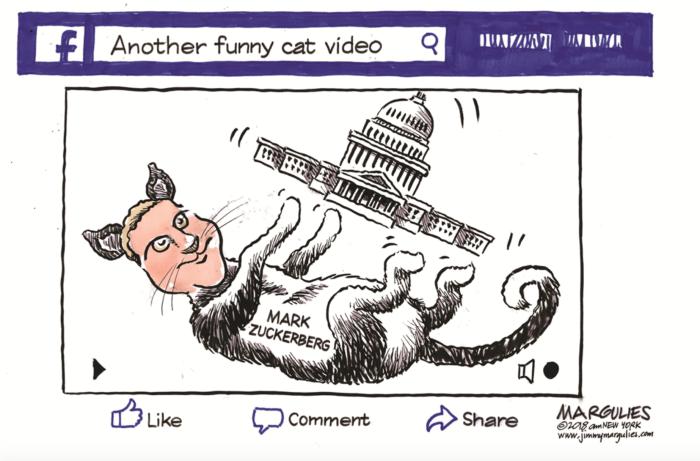Zuck-cat