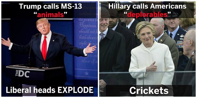 animals-vs-depolorables