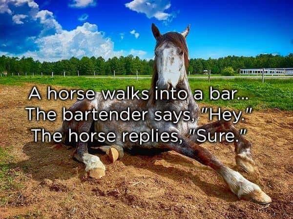 Horse-hey