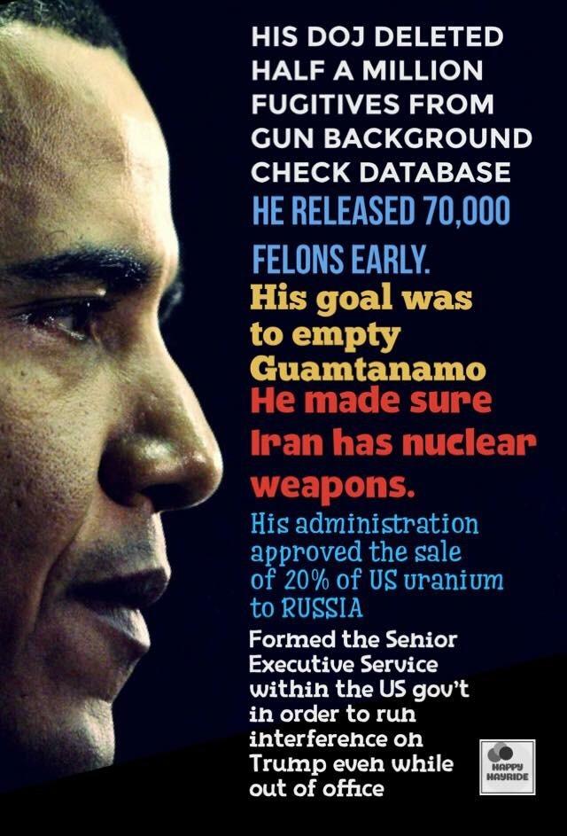 Obama-crimes