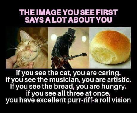 Purr-riff-a-Roll Vision