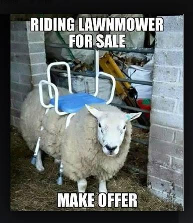 Riding-Lawnmower...