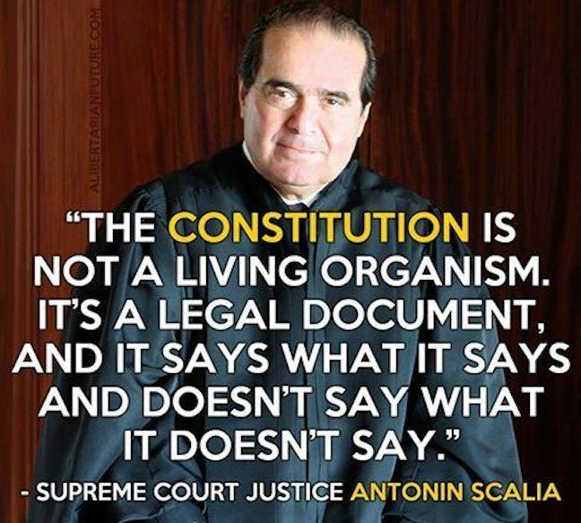Scalia Constitution