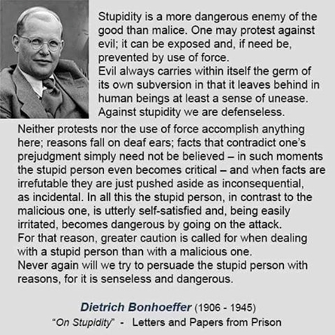 Bonhöffer on stupidity