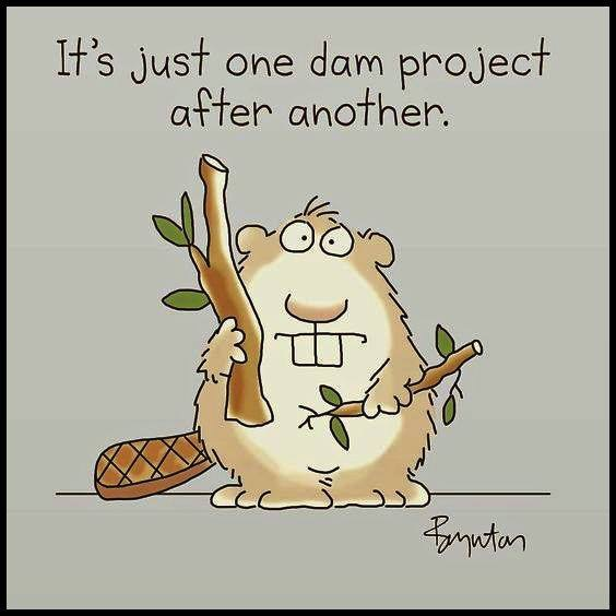 Dam projects
