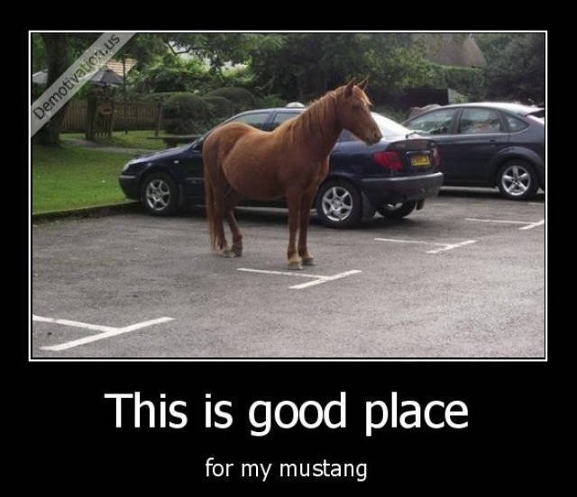 Good place for my Mustang