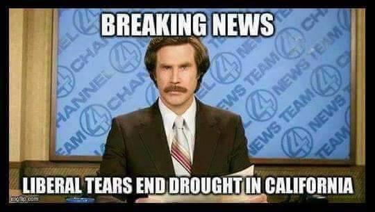 Librul tears