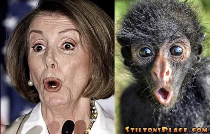 Nancy P. Lousy-Separated at Birth