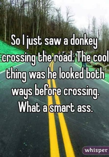 Smart @$$