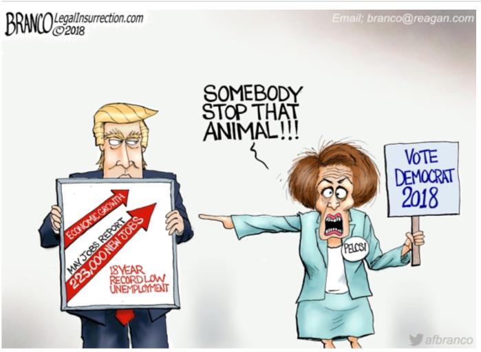 Trump_Nancy P. Lousy