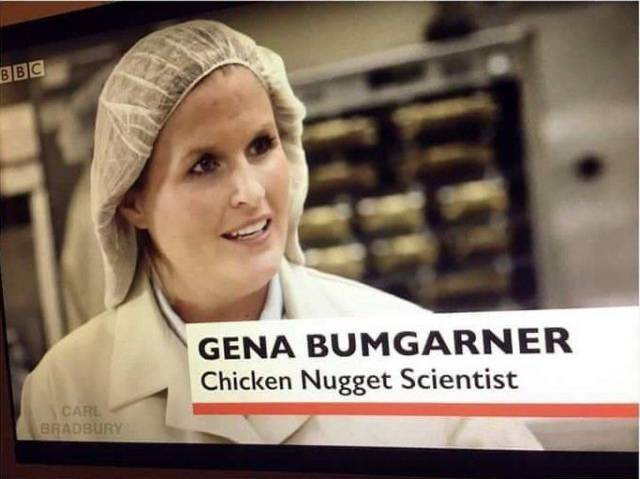 Chickent Nugget Scientist