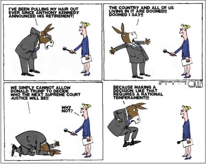 Democrat-meltdown