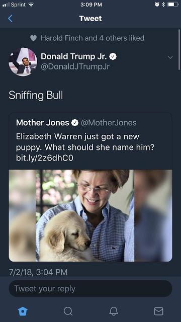 Fauxchahontas-sniffing bull