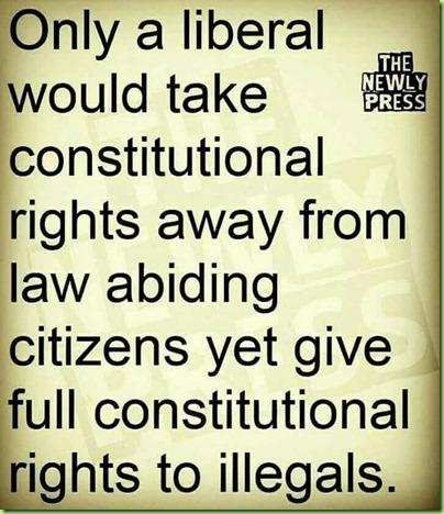 Librul-Constitution-illegals