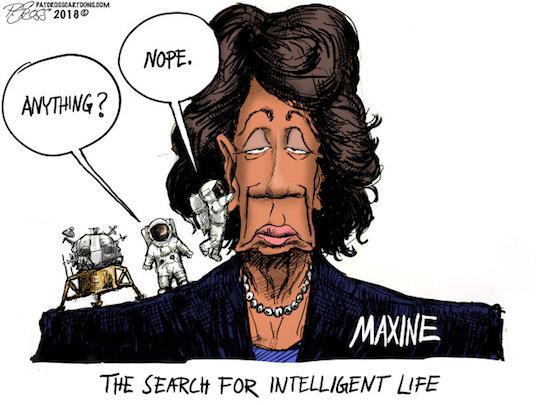 Maxine-no brain