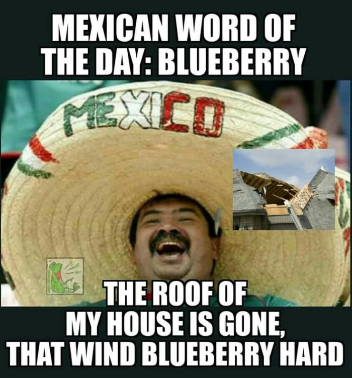 Mexican WOD-Blueberry