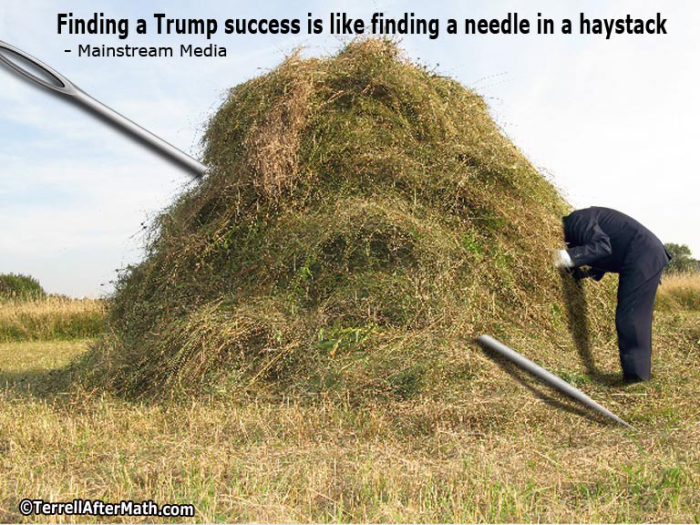 needle-in-haystack_orig