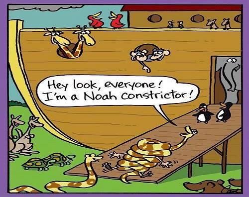 Noah-constrictor