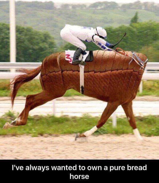 Pure Bread Horse
