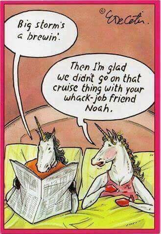 Unicorn-Noah