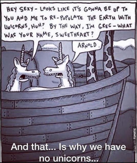 Why-we-have-no-unicorns...-575x686