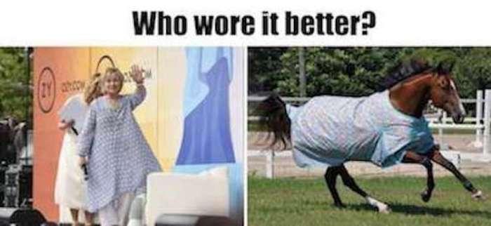 WWIB-Hillary-horse-