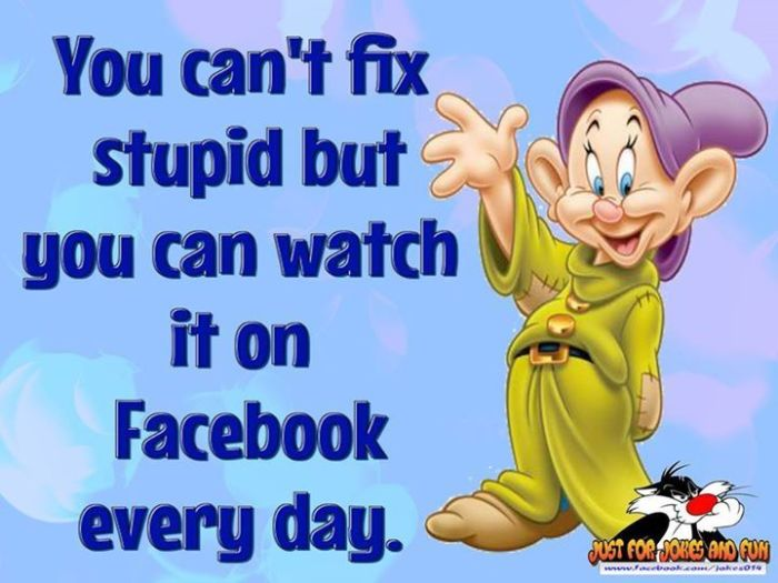 You-Can-t-Fix-Stupid-facebook