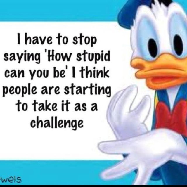 You can't fix stupid-challenge