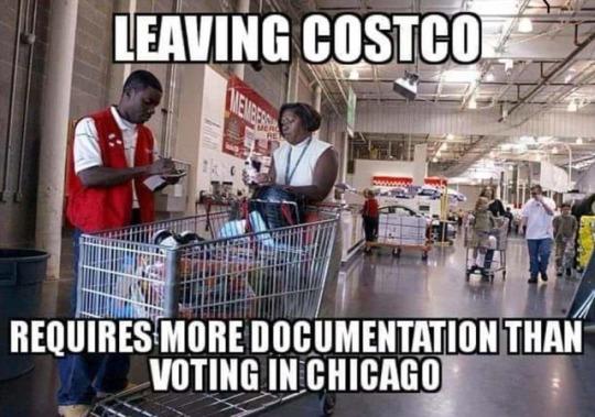 Chicago-voting-Costco