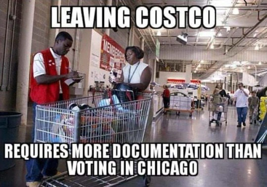 Chicago-voting-Costco