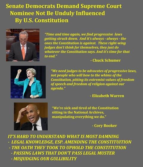 Democrats-Constitution