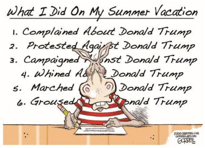 Democrats Summer Vacation