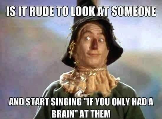 is-it-rude.brain
