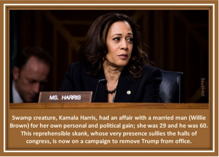 Kamala Harris-dirtbag
