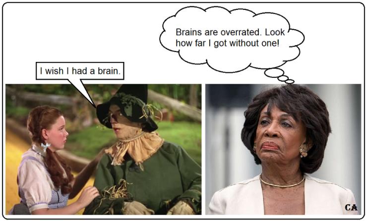 Mad Maxine-brain