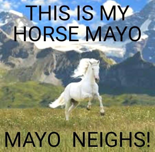 Mayo Neighs