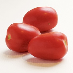 plum-tomatoes