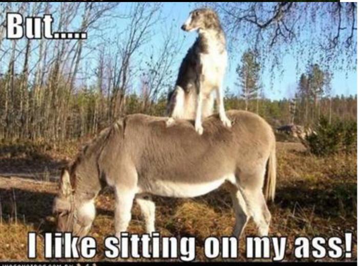 Sitting on my ass