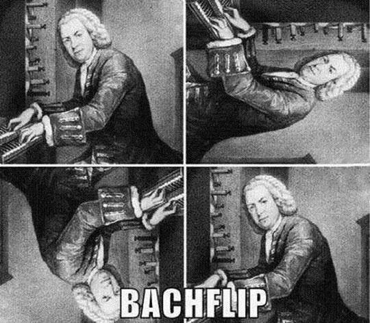 Bachflip