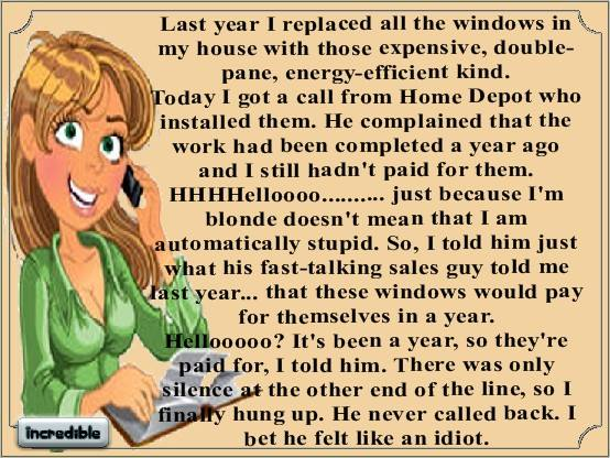 Blonde-energy-efficient-windows