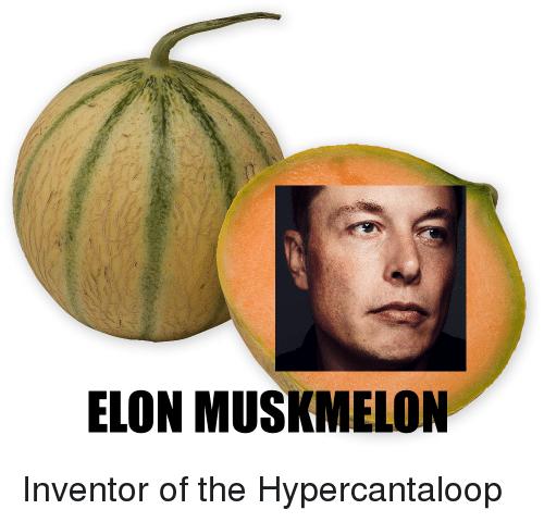 elon-musk-melon
