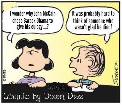 LibnutsMcVAIN-Obama