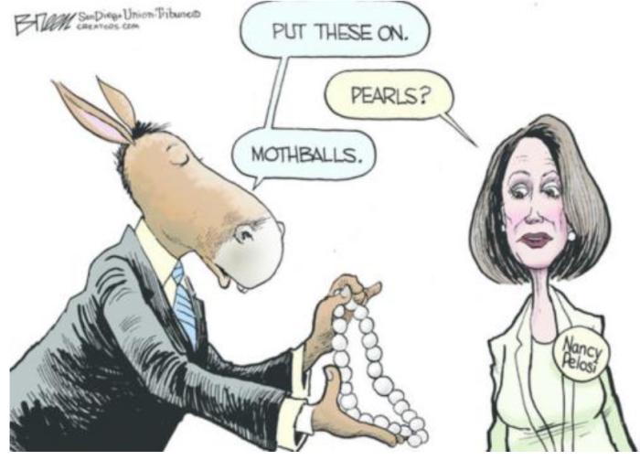 Nancy P. Lousy-Mothballs