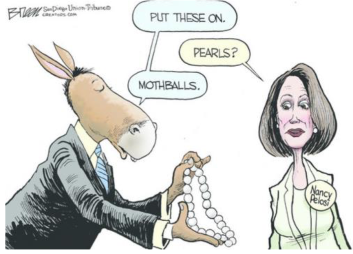 Nancy P. Lousy-Mothballs