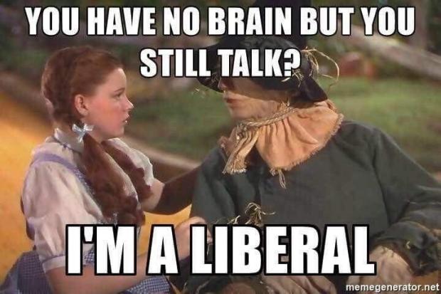 oz-strawman-liberal
