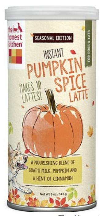 Pumpkin Spice Cat Latte