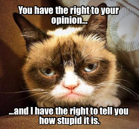 Right to your opinion