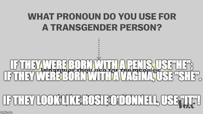 Transgender pronouns