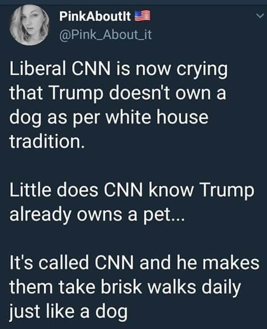 Trump's dog
